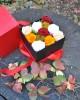 Special Maxi Crio Box
