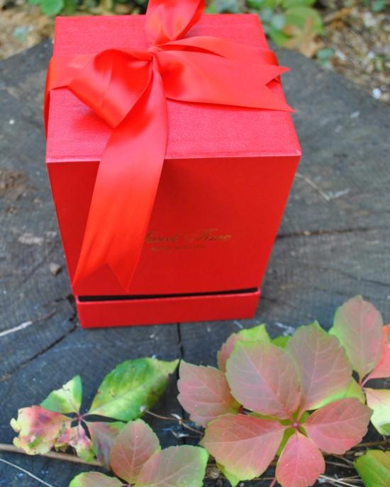 Special Midi Crio Box