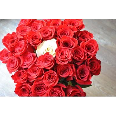 Buchet trandafiri Classique