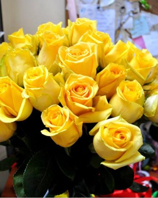 Buchet trandafiri Mellow Yellow